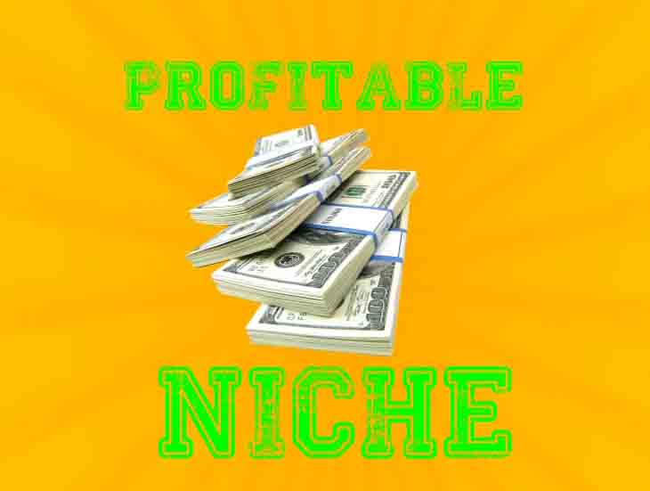 profitable-niche