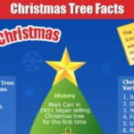 Christmas Tree Facts (Infographic)