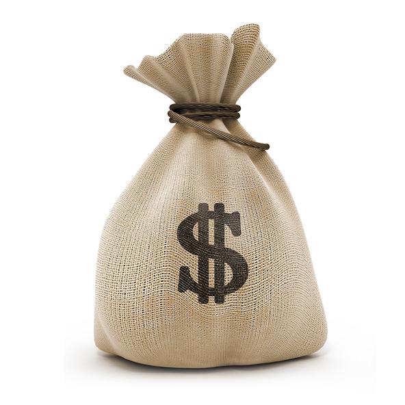 money-bags1