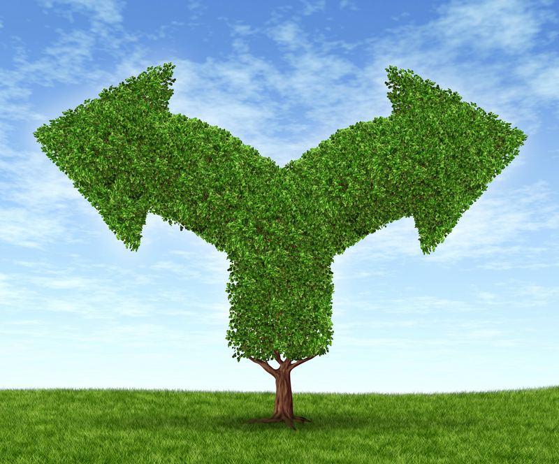 growth-capital-dilemma