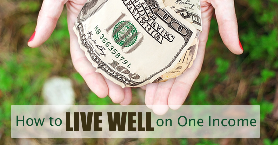 live-well-one-income-560