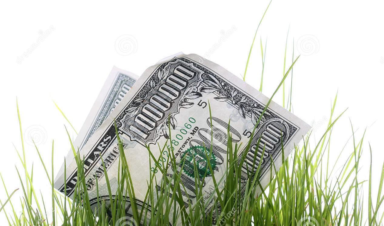 loss-money-14881178