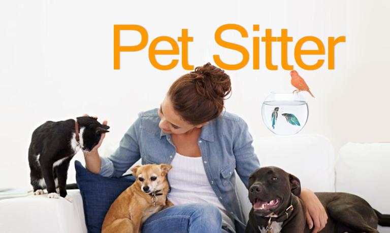 Financial Benefits of Being a Pet Sitter - MakeMoneyInLife com